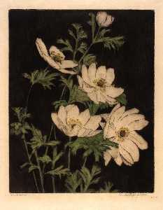 Bertha Evelyn Jaques - Anemones