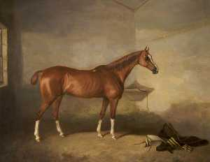 John Boultbee - A Chestnut Horse in a Stable