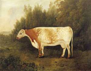 John Boultbee - -Spotted Nancy- A Cow