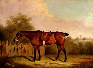Clifton Tomson - A Saddled Bay Hunter in a Landscape, beside a Fence