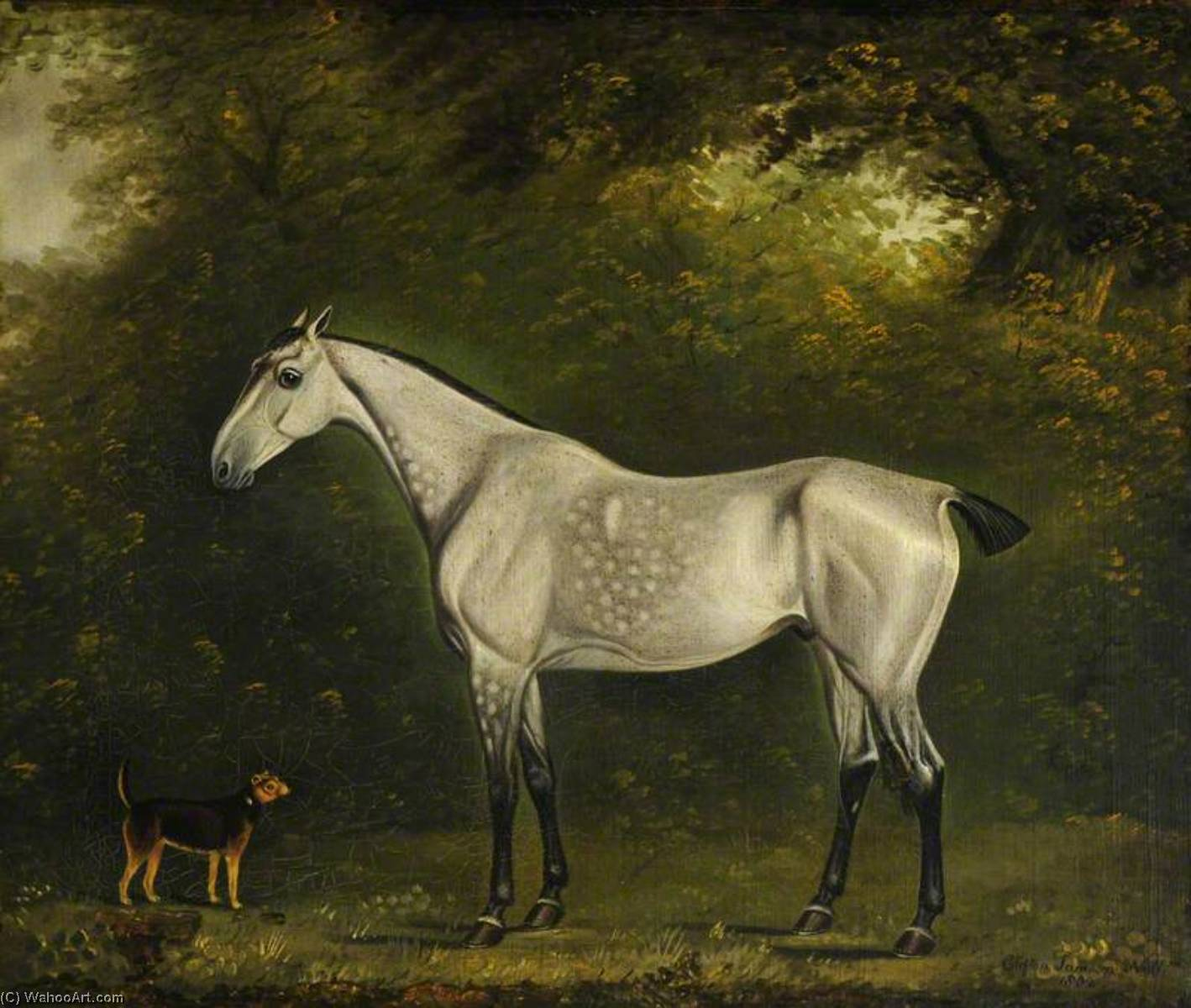A Dappled Grey Hunter with a Terrier amongst the Trees, 1802 by Clifton Tomson | WahooArt.com