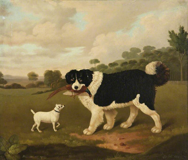 Two Dogs, Called 'Blumer' and 'Venom', Oil On Canvas by Edmund Ward Gill