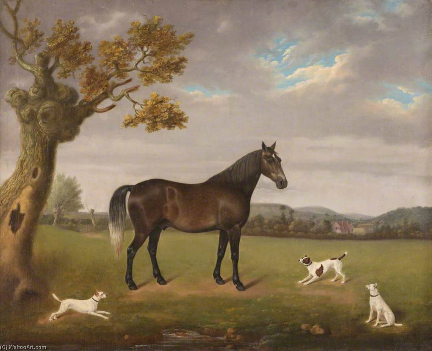 Horse in a Field with Three Dogs, Oil On Canvas by Edmund Ward Gill