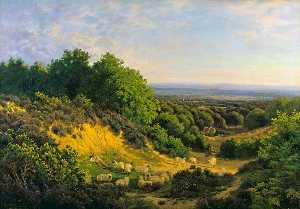 John Clayton Adams - The Evening Sun View on Ewhurst Hill, near Guildford