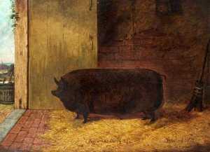 Richard Whitford