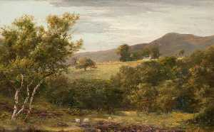 John Stewart - A Glen in Arran