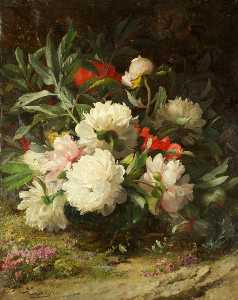 William Jabez Muckley - Peonies