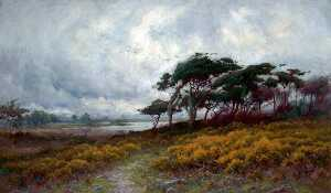 Peter Ghent - Golden Gorse and Windblown Trees