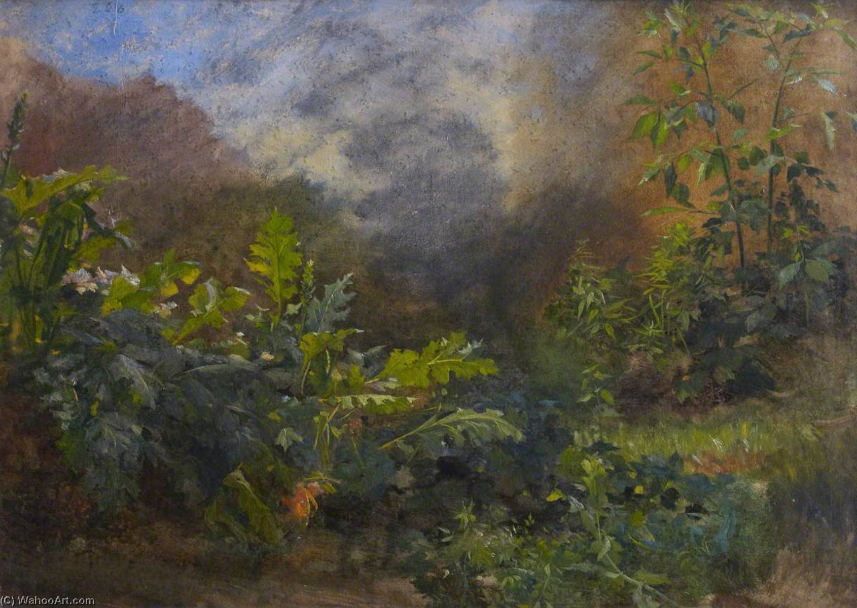 Waterside Vegetation, Oil On Canvas by Thomas Stuart Smith