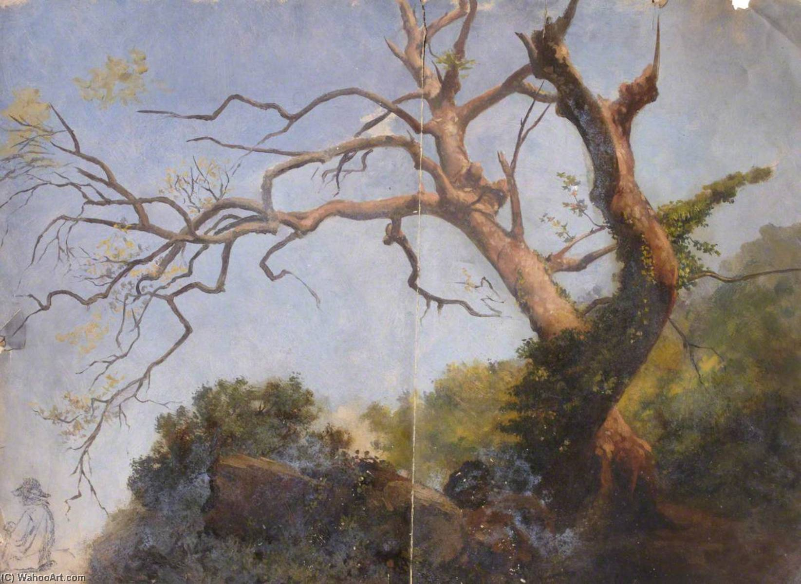 Study of a Tree by Thomas Stuart Smith | Art Reproduction | WahooArt.com