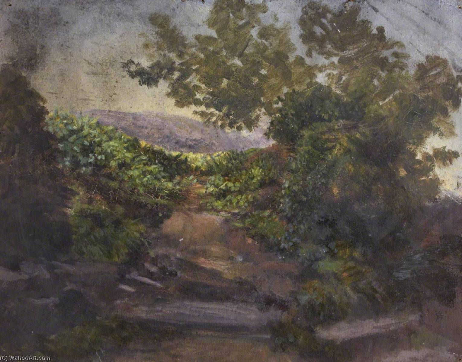 Landscape with Bushes and Trees, Oil by Thomas Stuart Smith