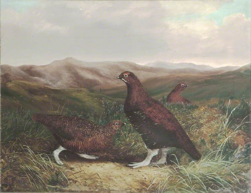 Cumberland Moor and Grouse, 1878 by Benjamin Hold | Museum Quality Reproductions | WahooArt.com