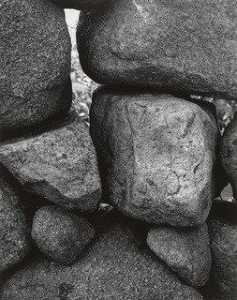 Aaron Siskind - Martha's Vineyard 114