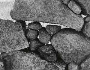 Aaron Siskind - Martha's Vineyard 124