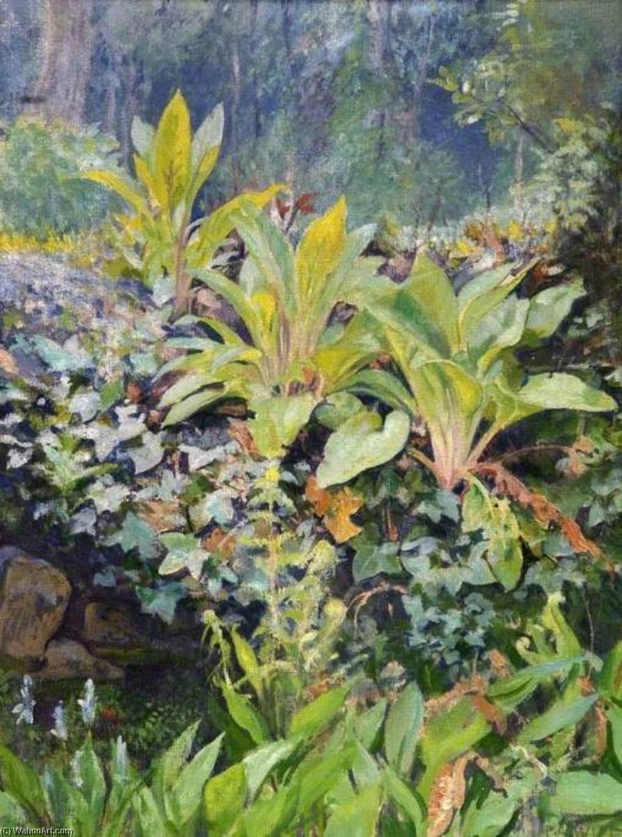 Young Foxgloves by Percival Arthur Wise | Oil Painting | WahooArt.com