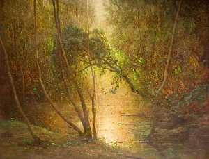 Benjamin Haughton - Woodland Waters