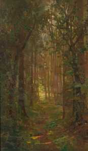 Benjamin Haughton - Woodland Path