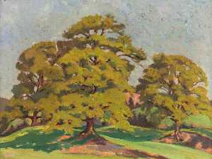 Gladys Vasey - Elms in the Sunshine