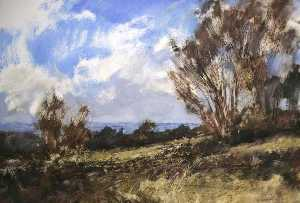 Robert Perry - View near the Glacial Boulder, Cannock Chase