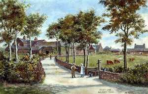 Harold Hopps - Pump Lane, Greasby, Wirral, 1903