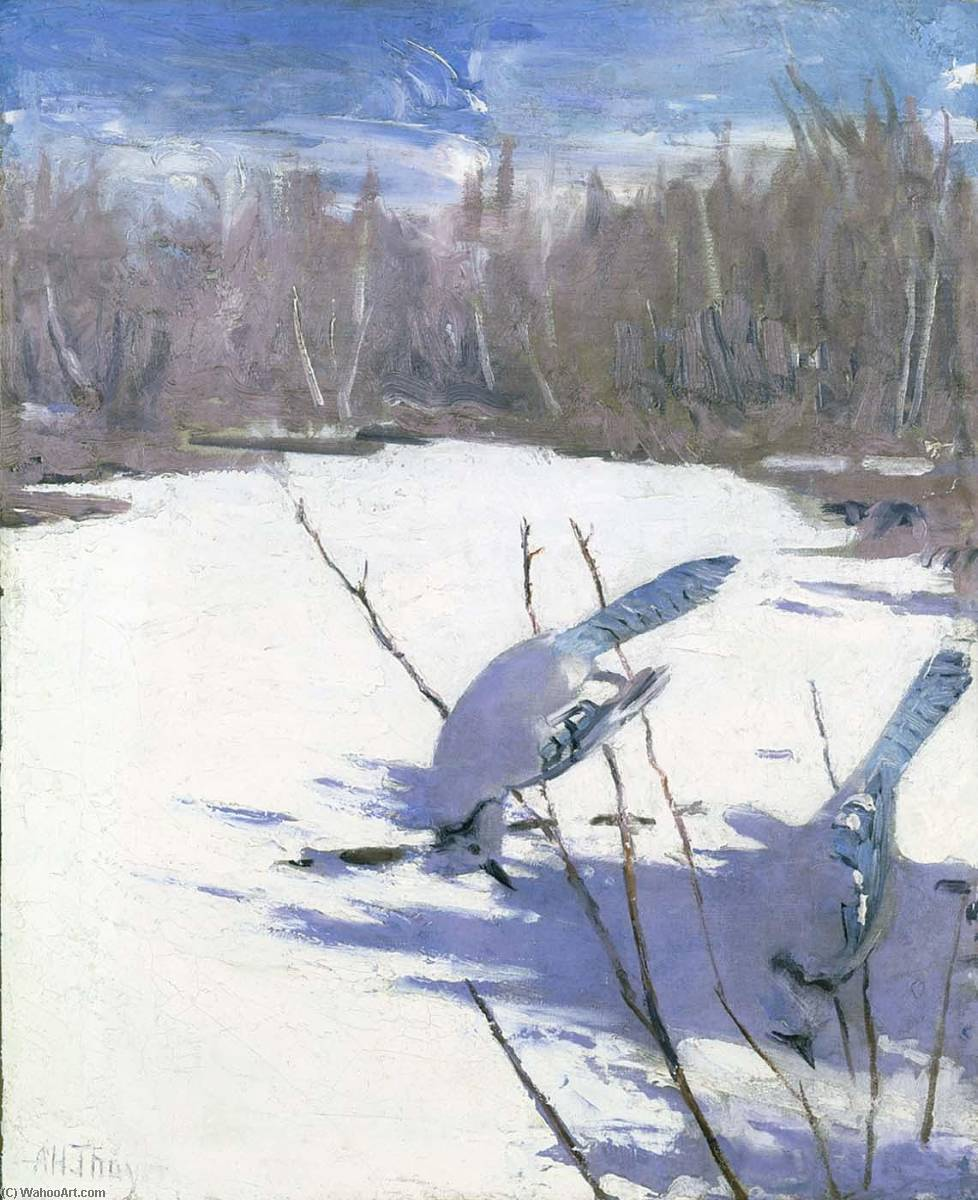 Blue Jays in Winter, study for book Concealing Coloration in the Animal Kingdom, Oil On Canvas by Abbott Handerson Thayer (1849-1921, United States)