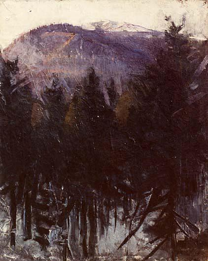 Thayer`s Mountain, (painting), 1903 by Abbott Handerson Thayer (1849-1921, United States) | Oil Painting | WahooArt.com