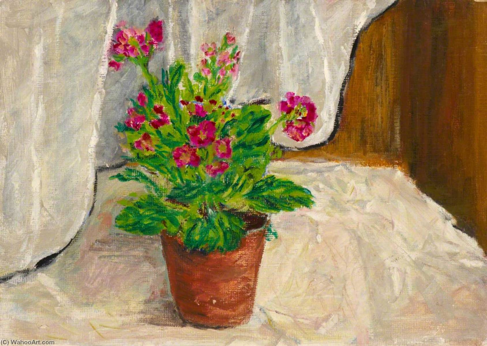 Potted Flower, Oil by Myfanwy Baker