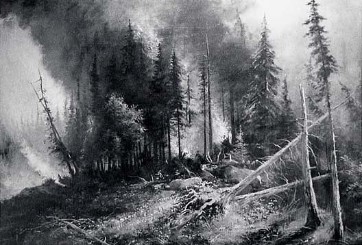 Forest Fire, (painting), 1911 by Von Luerzer (1851-1913) | Famous Paintings Reproductions | WahooArt.com