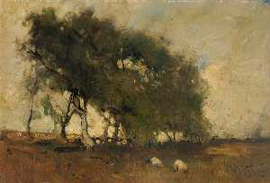 Arthur Douglas Peppercorn - Landscape Trees and Sheep