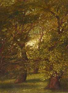 Beatrix Whistler