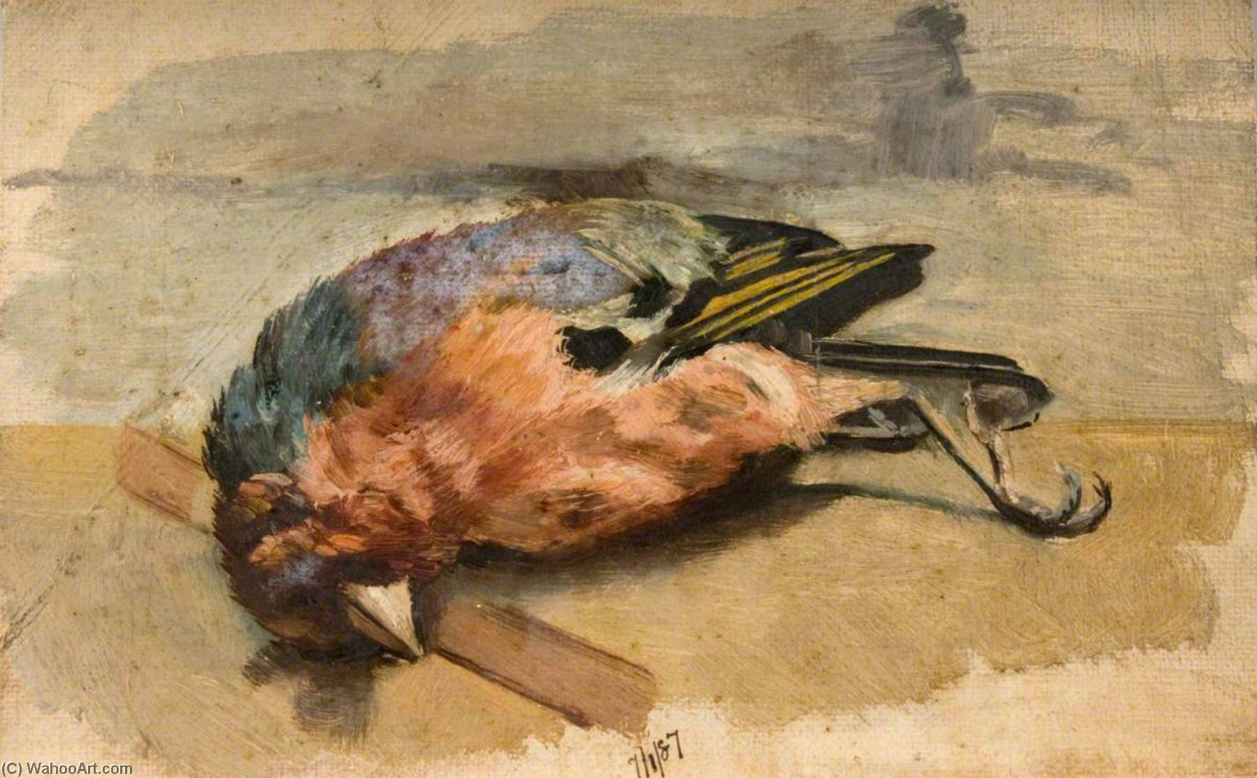 Study of a Dead Chaffinch, 1887 by George Cartlidge | Art Reproduction | WahooArt.com