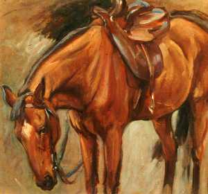 Percy Harland Fisher - Chestnut Horse (-Cookie- the Hunter) (recto)