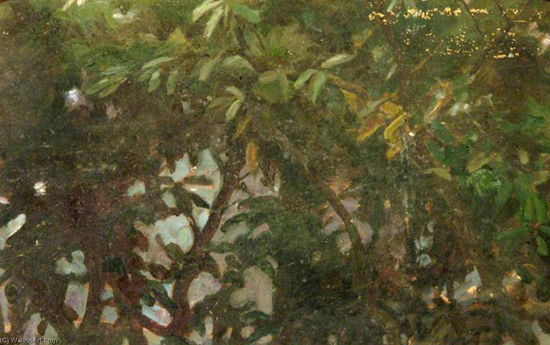 Leaves (verso), Oil by Percy Harland Fisher