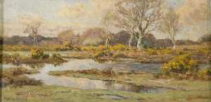 Frederick Golden Short - Heath with Standing Water