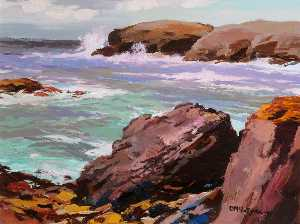 Donald Mcintyre - Rocky Shore, Anglesey