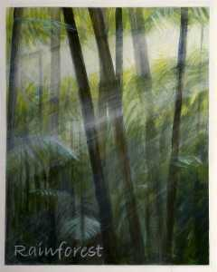 Antonia Phillips - -Dreams of Australia- Series, Rainforest