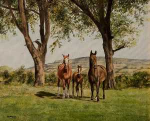 John Andrew Lawson - Mare and Foals
