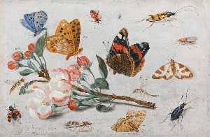 Jan Van Kessel The Elder - Study of Butterflies and Other Insects with a Sprig of Apple Blossom