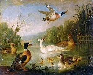 Marmaduke Cradock - Mallards on a Pond