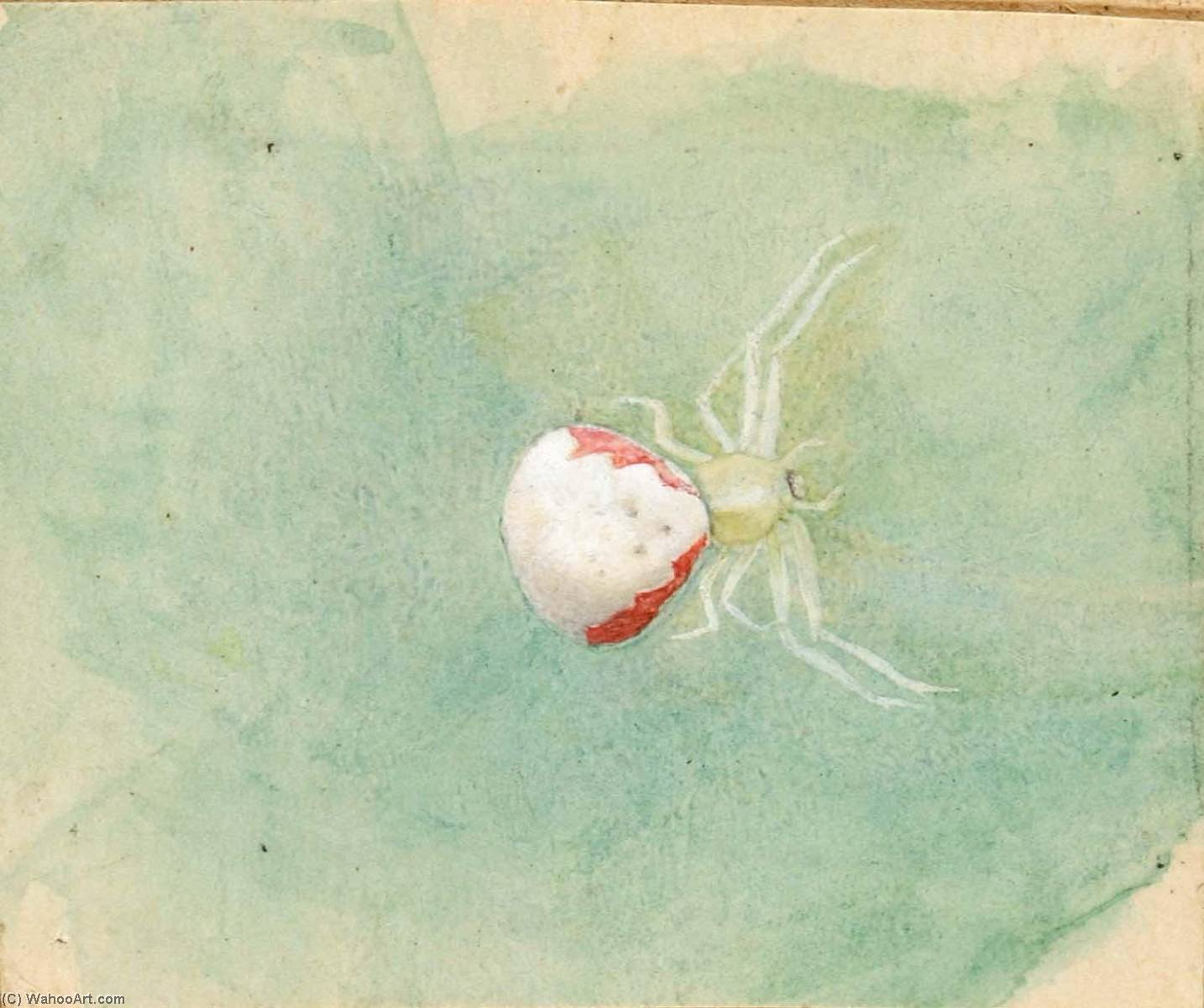 Porcelain White Spider by Emma Beach Thayer | Reproductions Emma Beach Thayer | WahooArt.com