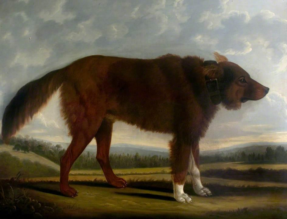 Lord Byron`s Dog `Lyon`, 1808 by Clifton Tomson | Art Reproduction | WahooArt.com