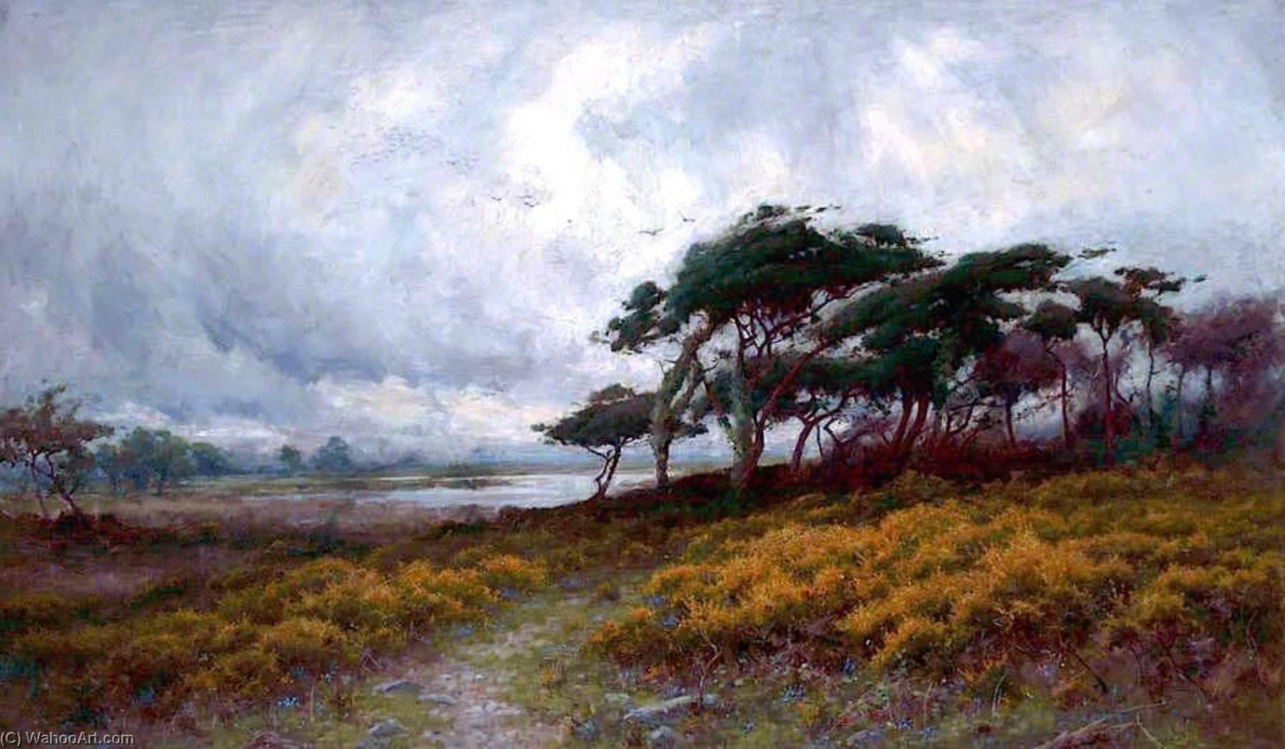 Golden Gorse and Windblown Trees by Peter Ghent | WahooArt.com