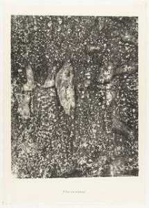 Jean Philippe Arthur Dubuffet - Live Water and Stones (Eau vive et pierres) from the portfolio Waters, Stones, Sand (Eaux, Pierres, Sable) from Phenomena (Les Phénomènes)