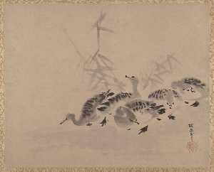 Kano Tan'yu