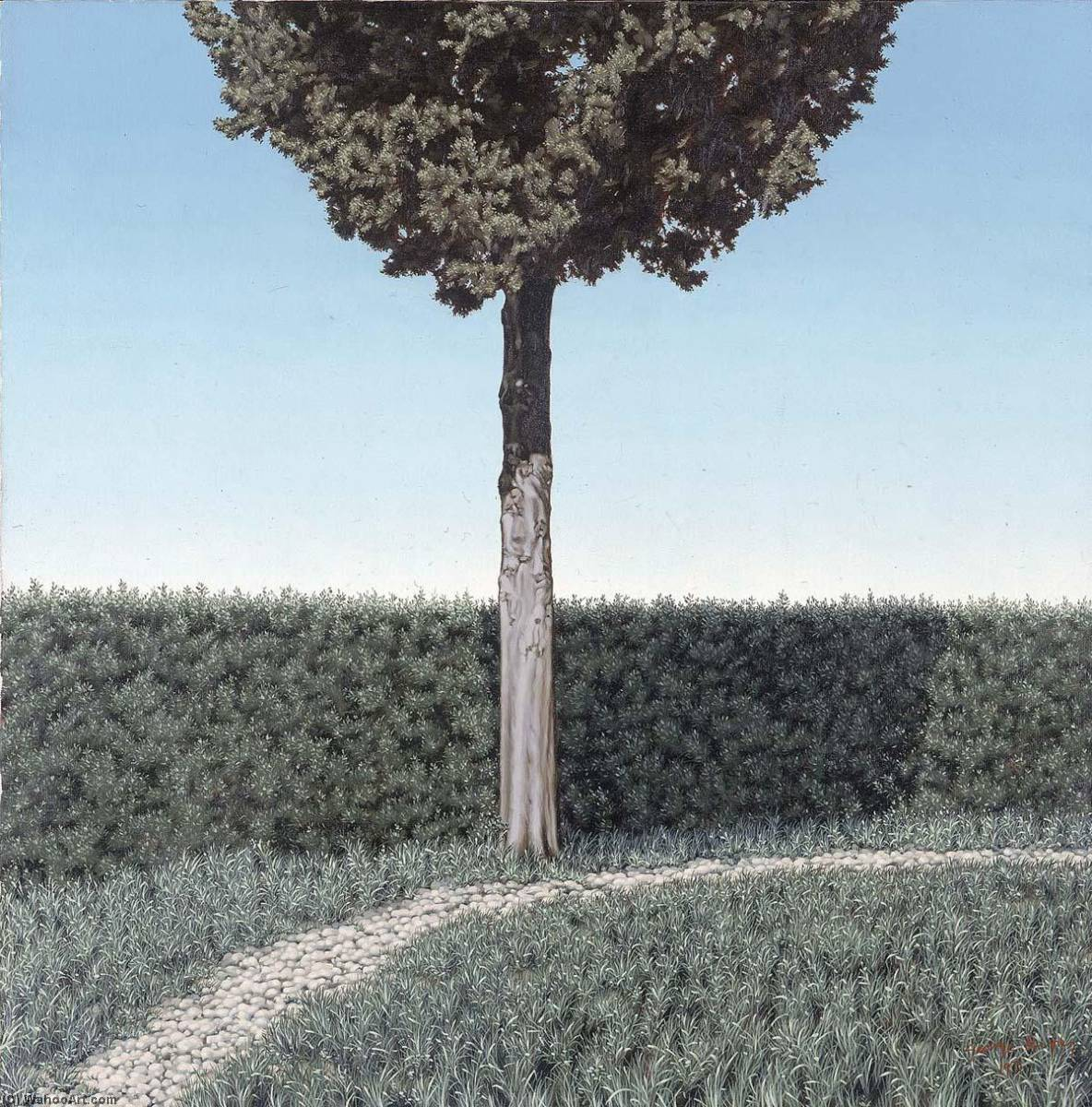 Hedge and Cypress, Oil On Canvas by George Murphy