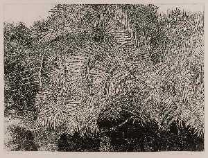 Great Palm, Etching by Patricia Tobacco Forrester (buy Fine Art Art reproduction Patricia Tobacco Forrester)