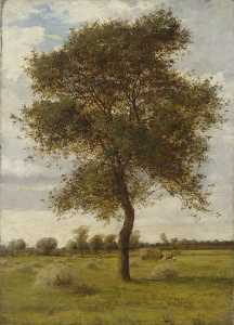James Hey Davies - Study of an Ash Tree in Summer
