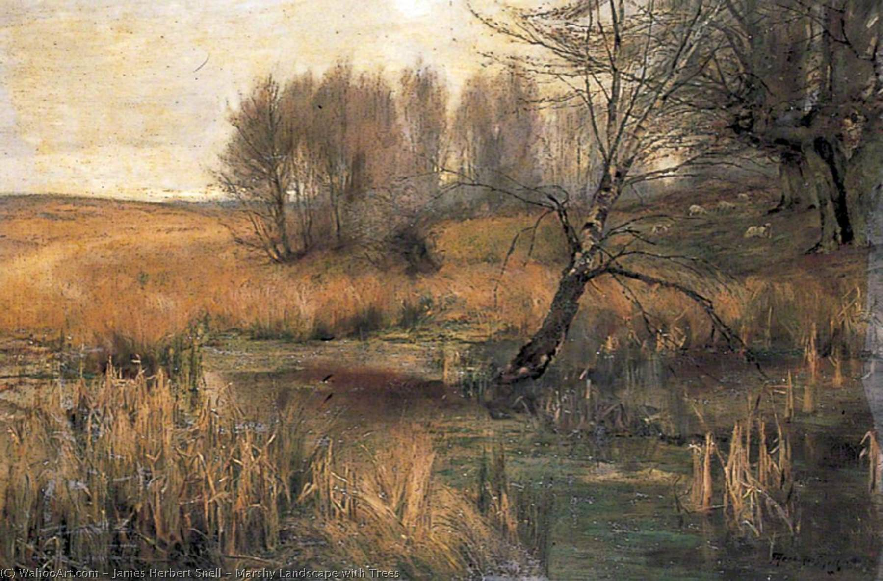 Marshy Landscape with Trees, Oil On Canvas by James Herbert Snell