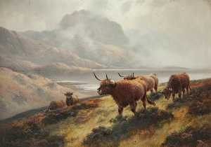 Henry Robinson Hall - Highland Cattle above Loch Maree