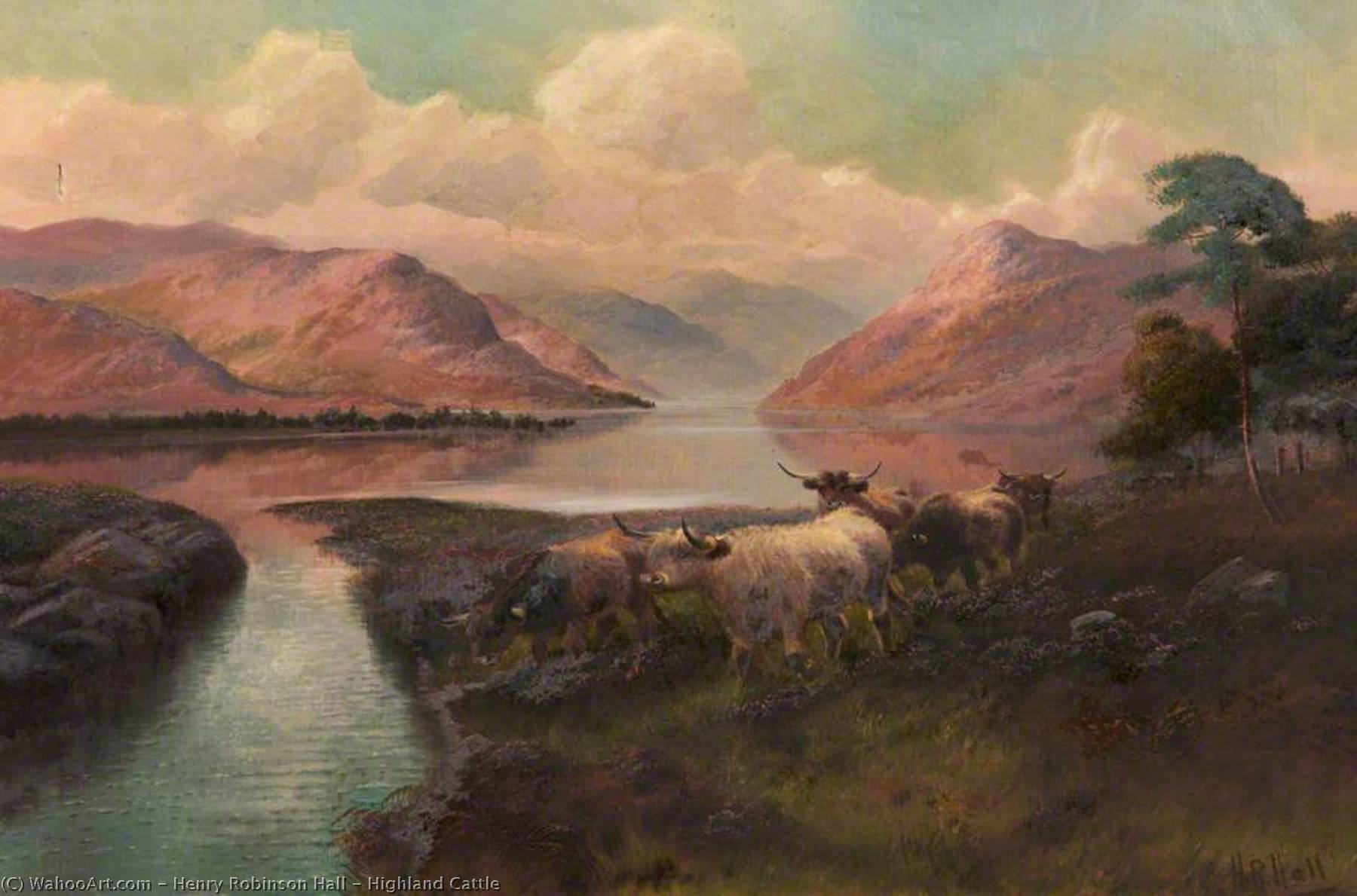 Order Reproductions | Highland Cattle by Henry Robinson Hall | WahooArt.com